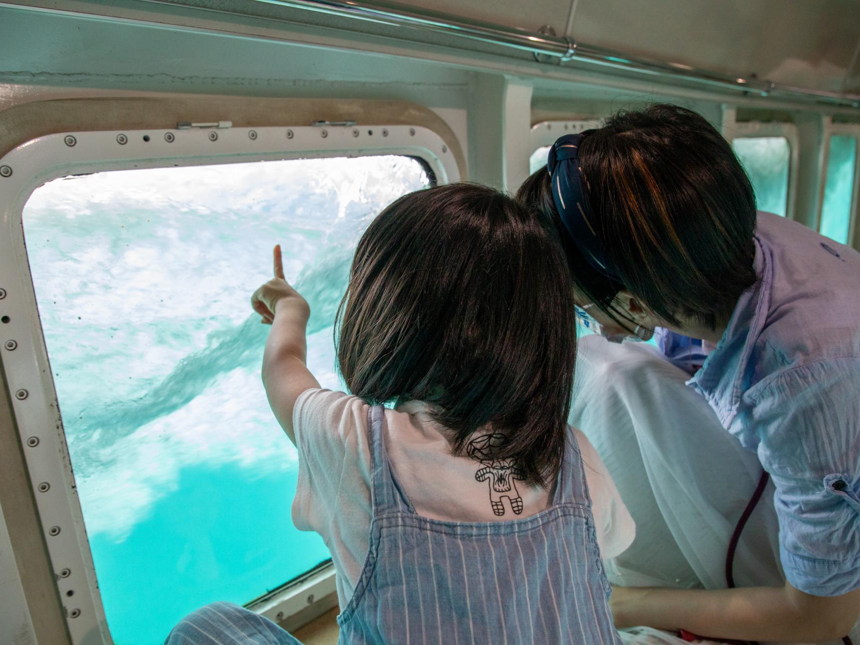 グラスボートで海中の世界を満喫-0
