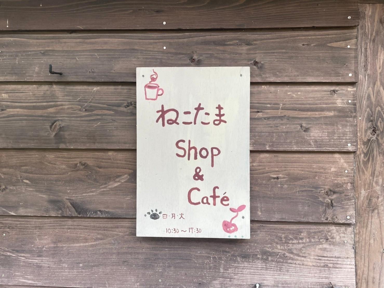 ねこたまShop&Cafe-0