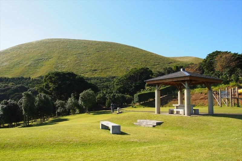 五島椿森林公園-1