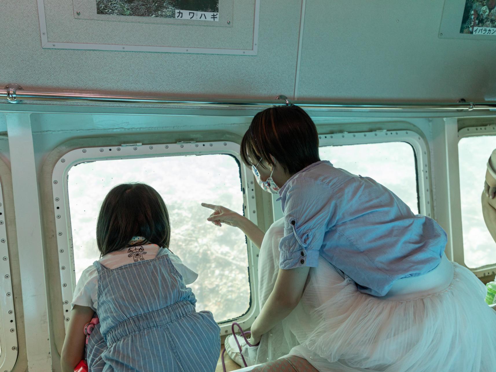 グラスボート「シーガル」竹の子島周遊コース-1